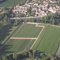 Pépinières viticoles des Charentes - Nercillac - LA PÉPINIÈRE